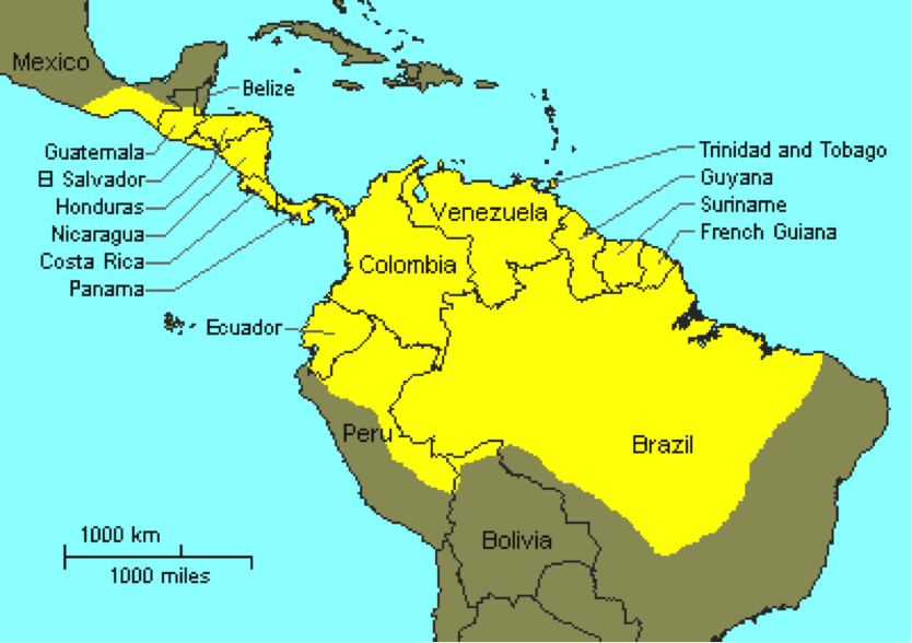 Map Of Brazil - Map of french guiana world