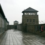 Mauthausen KZ Memorial Site (Photo by Matt Keyworth, 2013)