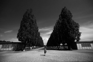 Tree lined avenue between the barracks at Dachau former concentration camp