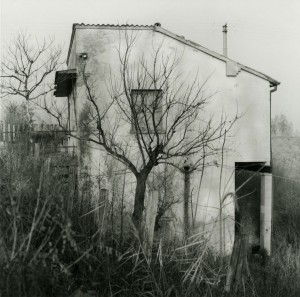 Cesare Ballardini, 'Lugo', 1986