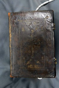 """SCS 03550: """"Wicked Bible"""", spine"""