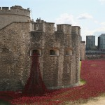 Poppy installation at the Tower of London, via the mirror.co.uk