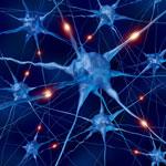 Neuron-Blog-Profile